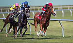 HALLANDALE BEACH, FL - JANUARY 27: Girls Know Best #1, with Javier Castellano, wins the Ladies' Turf Sprint Stakes on Pegasus World Cup Invitational Day at Gulfstream Park Race Track on January 27, 2018 in Hallandale Beach, Florida. (Photo by Bob Aaron/Eclipse Sportswire/Getty Images)