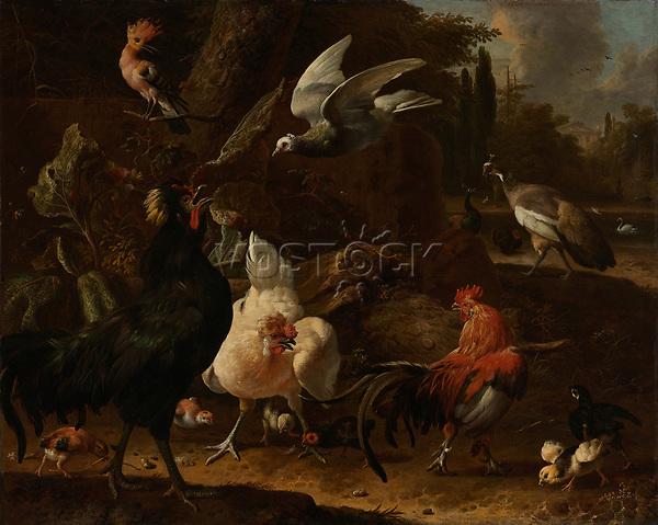 Birds in a park - by Melchior d' Hondecoeter, 1686