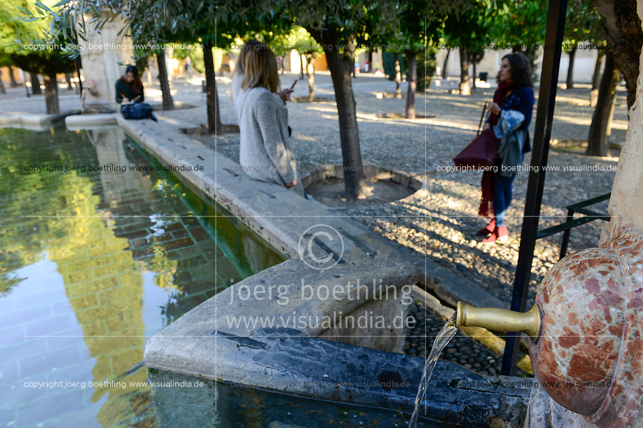 SPAIN, Cordoba, Mezquita, mosque and cathedral, court garden with orange trees and water bassin
