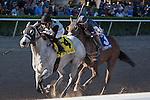 Jockey Jose Lezcano and Ullapool win the Florida Sunshine Millions Filly and Mare Sprint at Gulfstream Park, Hallandale Beach Florida. 01-18-2014