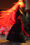 Flamenco show at the Flamenco Museum in Seville, Spain.