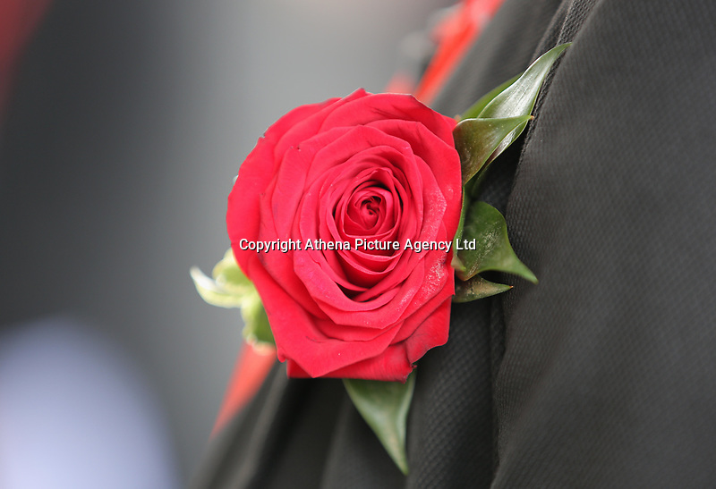 """Pictured: A rose worn by a Welsh Government employee Wednesday 31 May 2017<br />Re: The funeral for former first minister Rhodri Morgan has taken place in the Senedd in Cardiff Bay.<br />The ceremony, which was open to the public, was conducted by humanist celebrant Lorraine Barrett.<br />She said the event was """"a celebration of his life through words, poetry and music"""".<br />Mr Morgan, who died earlier in May aged 77, served as the Welsh Assembly's first minister from 2000 to 2009.<br />He was credited with bringing stability to the fledgling assembly during his years in charge.<br />It is understood Mr Morgan had been out cycling near his home when he died."""
