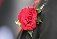 Pictured: A rose worn by a Welsh Government employee Wednesday 31 May 2017<br />