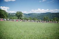 peloton over the 1st categorized climb of the day: Le Côte de Rogna (7.6km/4.9%) in the Jura region<br /> <br /> 2014 Tour de France<br /> stage 11: Besançon - Oyonnax (187km)