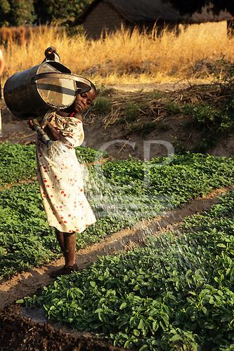 Ujiji, Tanzania. Girl using a watering can to water crops.