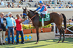 DEL MAR, CA  AUGUST 13: #5 Klimt gets a pat from Rafael Bejarano  after winning the Best Pal Stakes (Gll) at Del Mar Turf Club on August 13, 2016 at  Del Mar, CA  (Photo by Casey Phillips/Eclipse Sportswire/Getty Images)DEL MAR, CA  AUGUST 13:  at Del Mar Turf Club on August 6, 2016 at Del Mar, CA (Photo by Casey Phillips/Eclipse Sportswire/Getty Images)