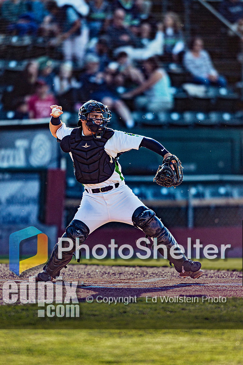 24 August 2019: Vermont Lake Monsters catcher Jose Rivas in action against the Lowell Spinners at Centennial Field in Burlington, Vermont. The Lake Monsters fell to the Spinners 3-2 in NY Penn League action. Mandatory Credit: Ed Wolfstein Photo *** RAW (NEF) Image File Available ***