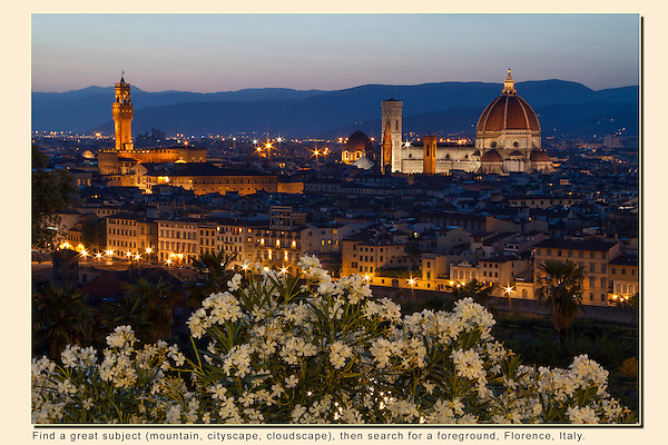 Italy, Florence.  Location Scout. <br /> Find locations to photograph and return when conditions are better. I got lucky here. Behind me was a powerful light from the Michel Angelo Square parking lot, that lit these flowers quite naturally. <br /> Sunset in Florence, Italy.