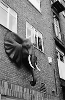 England. London region and the Greater London administrative area. London. A woman seats close to a window and watches outside. African elephant and brick wall. London is the capital city of England and the United Kingdom, and the largest metropolitan area in the United Kingdom. 10.06.1992 © 1992 Didier Ruef