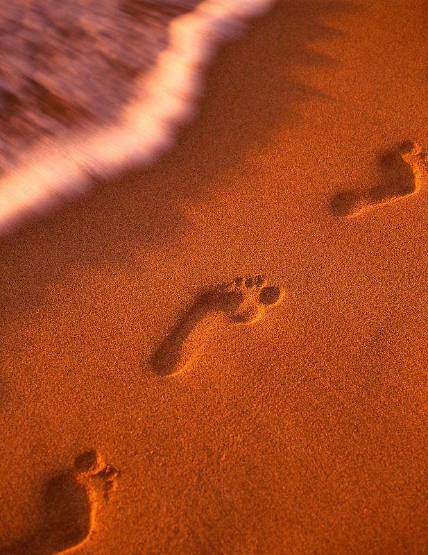 Footprints in the sand. Maui, Hawaii
