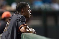 AZL Giants Black left fielder Kwan Adkins (8) in the dugout during an Arizona League game against the AZL Rangers at Scottsdale Stadium on August 4, 2018 in Scottsdale, Arizona. The AZL Giants Black defeated the AZL Rangers by a score of 6-3 in the second game of a doubleheader. (Zachary Lucy/Four Seam Images)