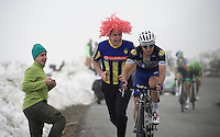 "Gianluca Brambilla (ITA/Etixx-Quixkstep) cheered on a bit too close-by up the snow-covered Colle dell'Agnello (2744m)<br /> All credit too Brambilla, he kept yelling to the wig-man ""Don't push me!""<br /> <br /> stage 19: Pinerolo(IT) - Risoul(FR) 162km<br /> 99th Giro d'Italia 2016"