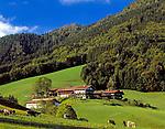 Deutschland, Bayern, Oberbayern, Chiemgau, Ruhpolding: Steinberger Hoefe | Germany, Bavaria, Upper Bavaria, Chiemgau, Ruhpolding: Steinberger farm houses