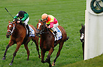 """October 03, 2015:  Grand Arch and jockey Luis Saez win the 30th running of The Shadwell Turf Mile (Grade 1) $1,000,000 """"Win and You're In Mile Division"""" for trainer Brian Lynch and owner Susan and Jim Hill.  Candice Chavez/ESW/CSM"""