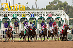 """ARCADIA, CA  SEPTEMBER 27:  The start of the Chandelier Stakes (Grade l) """"Win and You're In Breeders' Cup Juvenile Fillies Division"""", on September 27, 2019, at Santa Anita Park in Arcadia, CA. (Photo by Casey Phillips/Eclipse Sportswire/CSM)"""