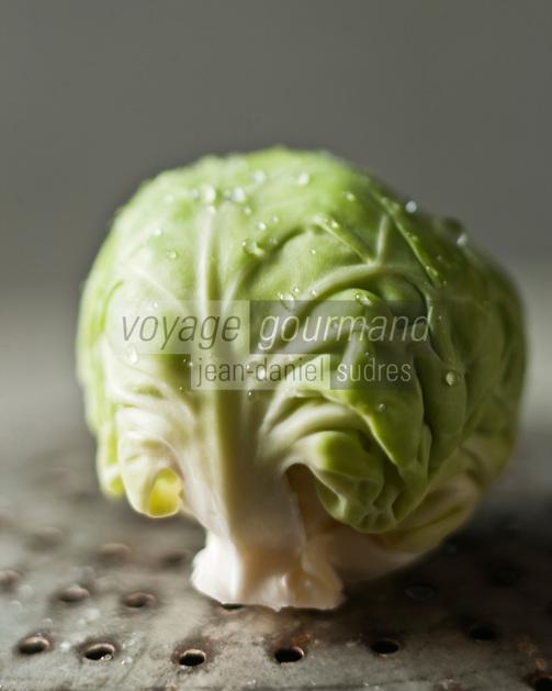 Gastronomie Générale: Chou de Bruxelles - Stylisme : Valérie LHOMME  / Gastronomy: Brussels sprout - Stylism: Valérie LHOMME