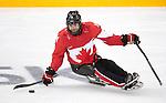 Steve Arsenault, Sochi 2014 - Para Ice Hockey // Para-hockey sur glace.<br /> Team Canada takes on Sweden in Para Ice Hockey // Équipe Canada affronte la Suède en para-hockey sur glace. 08/03/2014.