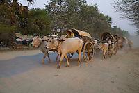 Along the Banks of the  Ayeyawarddy River in Mandalay, Burma, Myanmar