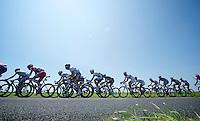 peloton driveby<br /> <br /> Tour de France 2013<br /> stage 13: Tours to Saint-Amand-Montrond, 173km