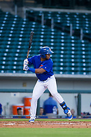 AZL Cubs center fielder Nelson Velazquez (20) at bat against the AZL White Sox on August 13, 2017 at Sloan Park in Mesa, Arizona. AZL White Sox defeated the AZL Cubs 7-4. (Zachary Lucy/Four Seam Images)
