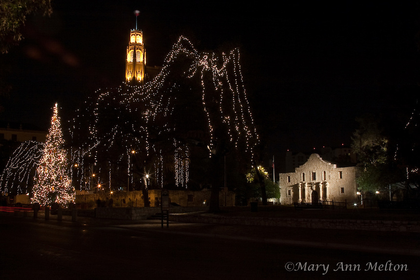 A photo of the Alamo with the Christmas Tree and the Riverwalk lights