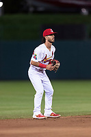 Springfield Cardinals shortstop Kramer Robertson (3) during a Texas League game against the Amarillo Sod Poodles on April 25, 2019 at Hammons Field in Springfield, Missouri. Springfield defeated Amarillo 8-0. (Zachary Lucy/Four Seam Images)
