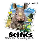 Howard, SELFIES, paintings+++++,GBHRPROV134,#Selfies#, EVERYDAY