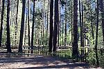 Lower Pines Campground, Yosemite - 2011