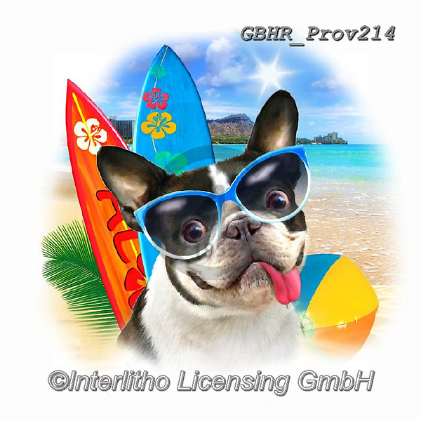 Howard, REALISTIC ANIMALS, REALISTISCHE TIERE, ANIMALES REALISTICOS, paintings+++++French Bulldog,GBHRPROV214,#a#, EVERYDAY ,selfies