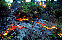 Lava flows through brush at Hawaii Volcanoes National Park.