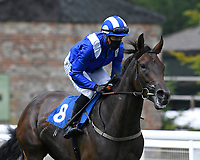 Almareekh ridden by Jim Crowley goes down to the start of  The British Stallion Studs EBF Odstock Fillies' Handicap during Horse Racing at Salisbury Racecourse on 13th August 2020