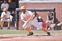 Tennessee Volunteers designated hitter Leno Ramirez (8) fouls off a bunt during game one of a double header against the UC Irvine Anteaters at Lindsey Nelson Stadium on March 12, 2016 in Knoxville, Tennessee. The Volunteers defeated the Anteaters 14-4. (Tony Farlow/Four Seam Images)