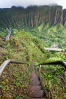 "An aerial view at dawn of the  Ko'olau mountain range and H-3 Freeway with steps descending into Haiku valley from the  Haiku Stairs (""Stairway to Heaven"") hiking trail in Kaneohe, O'ahu"