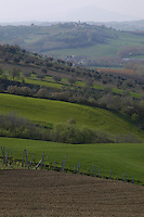 Panorami agricoli. Agricultural landscapes....