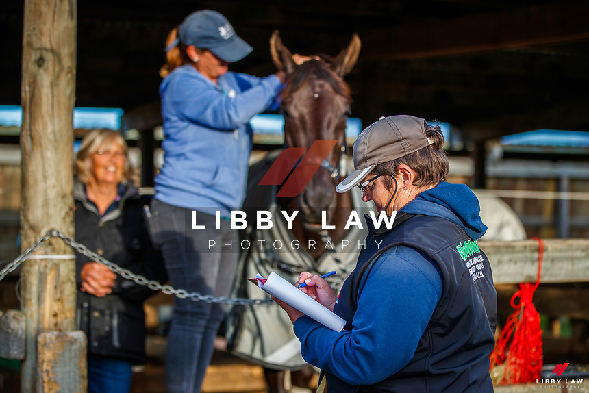 2020 NZL-Bates NZ Dressage Championships. NEC Taupo. Wednesday 18 November 2020. Copyright Photo: Libby Law Photography