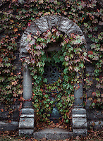 Burial vault with ivy, Sleepy Hollow Cemetery, New York, USA