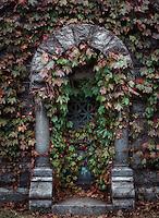 Burial vault with ivy, Sleepy Hollow Cemetery, New York, USA