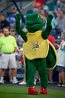 Reading Fightin Phils mascot Change-Up the Turtle before an Eastern League game against the Trenton Thunder on August 16, 2019 at FirstEnergy Stadium in Reading, Pennsylvania.  Trenton defeated Reading 7-5.  (Mike Janes/Four Seam Images)