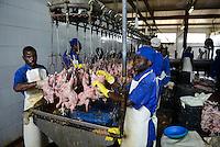 MOZAMBIQUE, Chimoio, chicken farm and slaughterhouse Agro-Pecuaria Abilio Antunes, processing of broiler at slaughterhouse / MOSAMBIK, Chimoio, Huehnerfarm und Schlachthaus Agro-Pecuaria Abilio Antunes, Verarbeitung zu Haehnchen nach Schlachtung