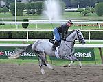 7.30.10 Dry Martini gallops over the Saratoga main track