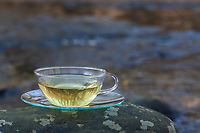 Kräutertee, Heiltee, Tee aus jungen, frischen Blätter im zeitigen Frühjahr, harntreibende Kräuter, Frühjahrskur, Frühlingskur, Blutreinigung, Stoffwechselanregend, herb tea, herbal tea, tea. Kletten-Labkraut, Klett-Labkraut, Klettenlabkraut, Klettlabkraut, Klebkraut, Klettkraut, Galium aparine, Cleavers, Goosegrass, catchweed, stickyweed, stickybud, robin-run-the-hedge, sticky willy, Le Gaillet gratteron. Gewöhnliche Vogelmiere, Vogelmiere, Vogel-Sternmiere, Hühnerdarm, Stellaria media, common chickweed, chickweed, chickenwort, craches, maruns, winterweed, La Stellaire intermédiaire, Morgeline. Große Brennnessel, Brennnessel, Brennnesseln, Brennessel, Urtica dioica, Stinging Nettle, common nettle, nettle, nettle leaf, La grande ortie, ortie dioïque, ortie commune