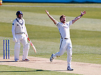 Yorkshire's David Willey appeals for an LBW during Kent CCC vs Yorkshire CCC, LV Insurance County Championship Group 3 Cricket at The Spitfire Ground on 16th April 2021