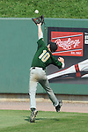 Aberdeen, MD: Willamette Valley's Dane Stapley reaches up to catch a fly ball hit to deep center field during Thursday afternoon's Tampa v Willamette Valley game at the 2009 Cal Ripken World Series