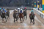 HOT SPRINGS, AR - FEBRUARY 19: My Boy Jack (far right) ,with jockey Kent Desormeaux winning the Southwest Stakes at Oaklawn Park on February 19, 2018 in Hot Springs, Arkansas. (Photo by Ted McClenning/Eclipse Sportswire/Getty Images)