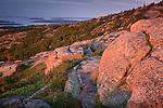 Cadillac Mountain sunrise view of Frenchman Bay, Acadia National Park, ME, USa