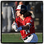 Designated hitter Elvin Rosa (14) of the North Greenville Crusaders hits an RBI double in the sixth inning of a game against the Palm Beach Atlantic Sailfish on Monday, February 25, 2019, at Ashmore Park in Tigerville, South Carolina. Palm Beach won, 7-5. (Tom Priddy/Four Seam Images)
