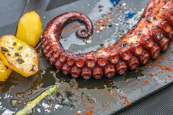 Grilled octopus. Itxas Etxea Restaurant. Elantxobe. Urdaibai Region. Bizkaia. Basque Country. Spain.