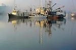 Seattle, yachts, commercial salmon boats, Fisherman's Terminal, Lake Washington Ship Canal, Interbay, Seattle, Washington State, Pacific Northwest,.