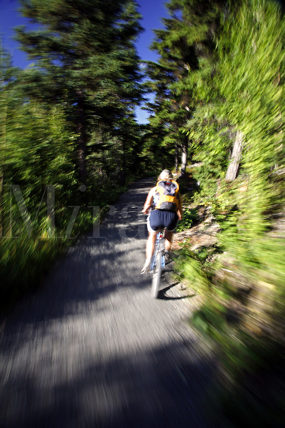Mountain Bike riding on the Russian Lakes-Resurrection River Trail, Kenai Peninsula, Chugach National Forest, Alaska.