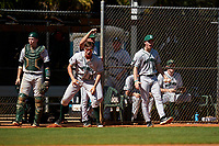 Dartmouth Big Green Ben Rice (9), Nathan Skinner (15), Kolton Freeman (28), and Trystan Sarcone (14) during a game against the Omaha Mavericks on February 23, 2020 at North Charlotte Regional Park in Port Charlotte, Florida.  Dartmouth defeated Omaha 8-1.  (Mike Janes/Four Seam Images)